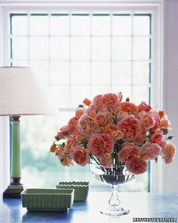 Gather an armful of garden roses in a tight range of soft colors and form an arching dome in a glass compote.