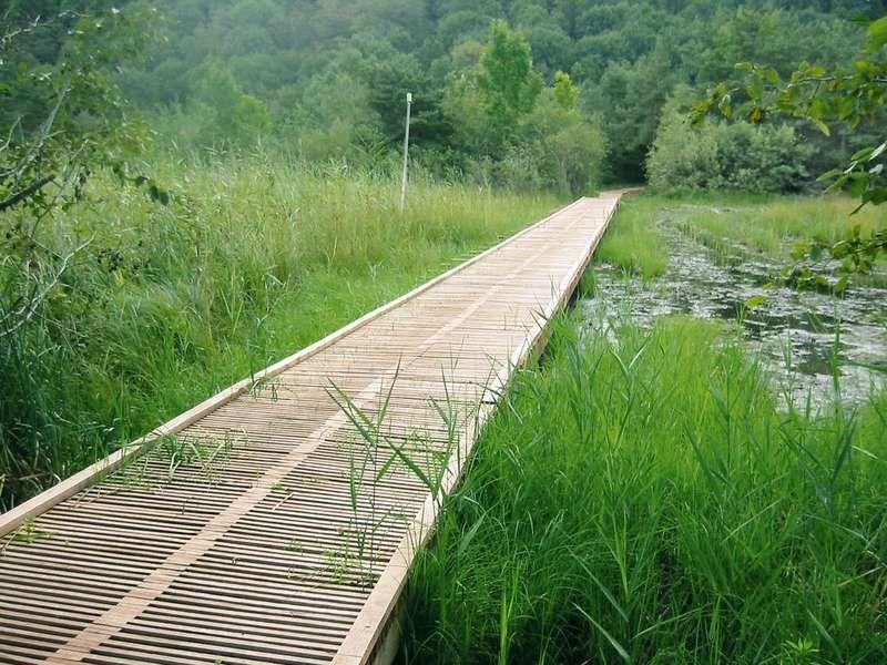 offre pour les espaces verts passareco sa passerelles