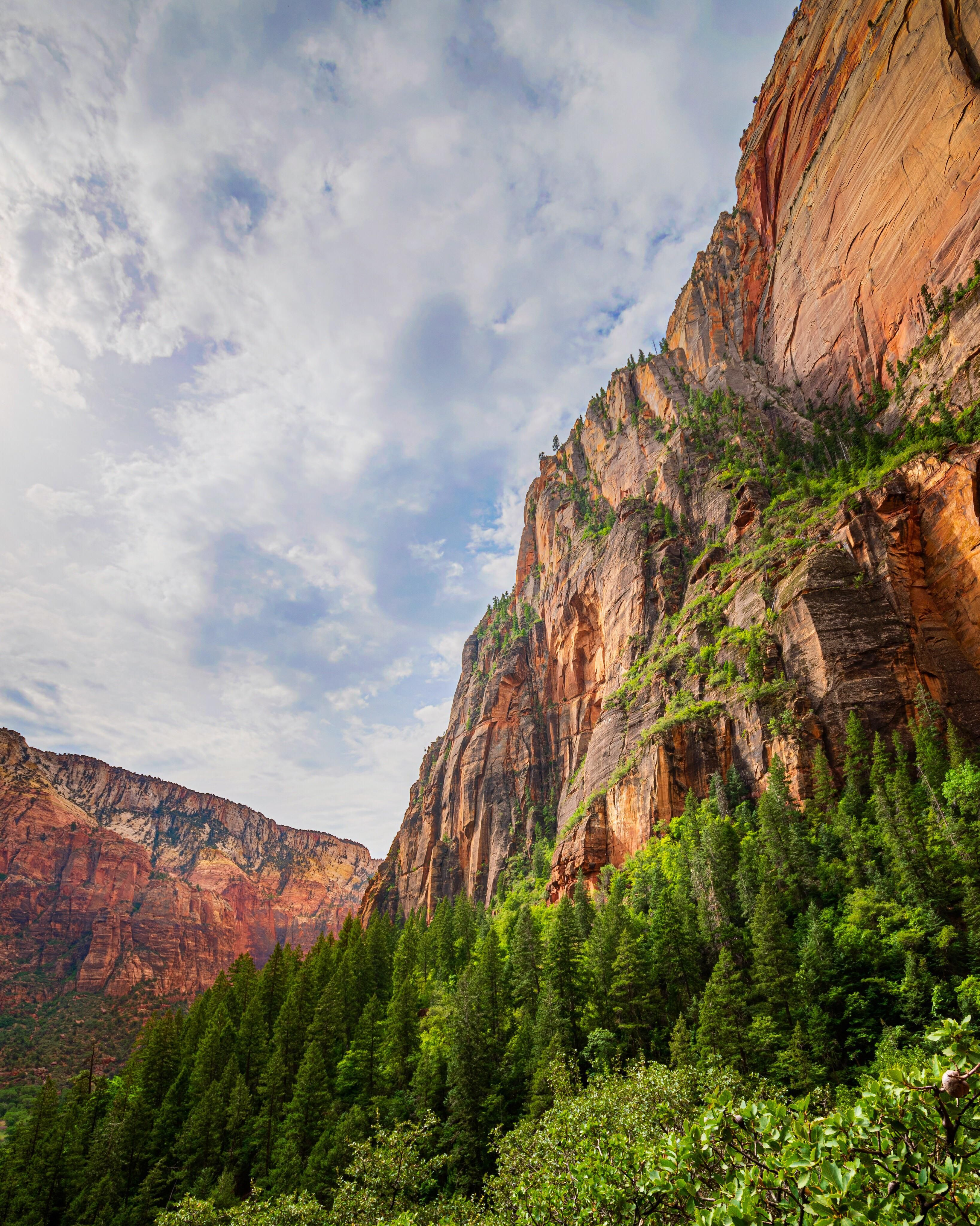 Views On The Way To Weeping Rock Weeping Rock Trail Zion National