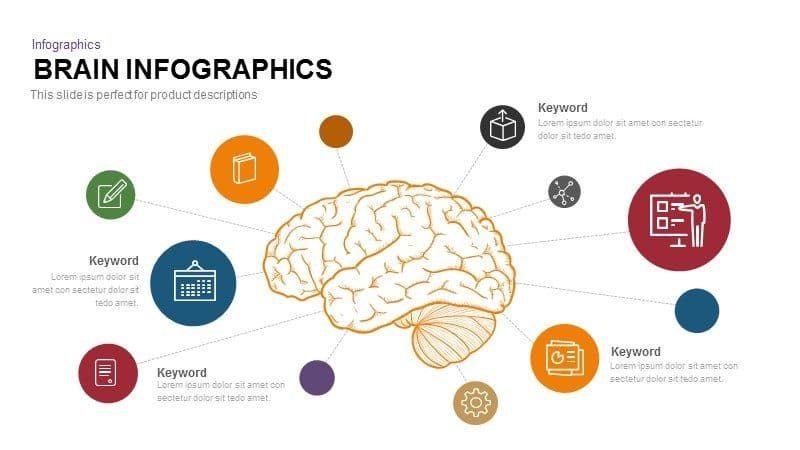 Brain Powerpoint Template And Keynote Slide ในป 2020