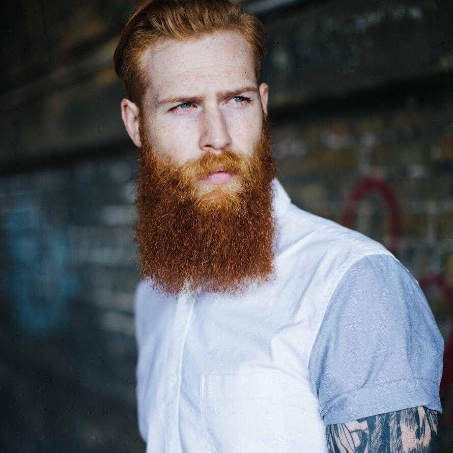 Gwilym pugh full thick red beard mustache beards bearded for Red beard tattoo