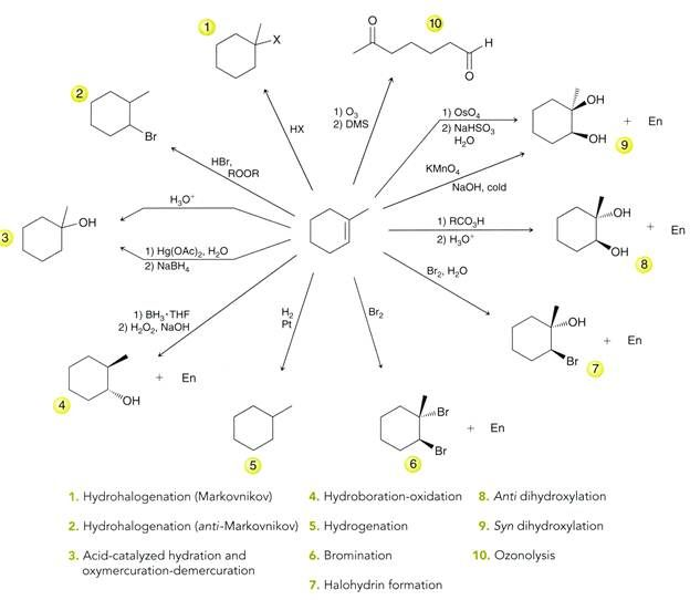 alkanes typical reactions in addition to functionality essay