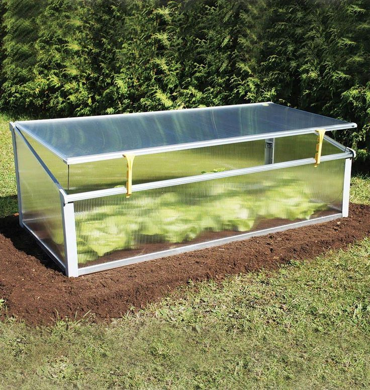Juwel Year Round Cold Frame | Crop protection, Cold frame and Gardens
