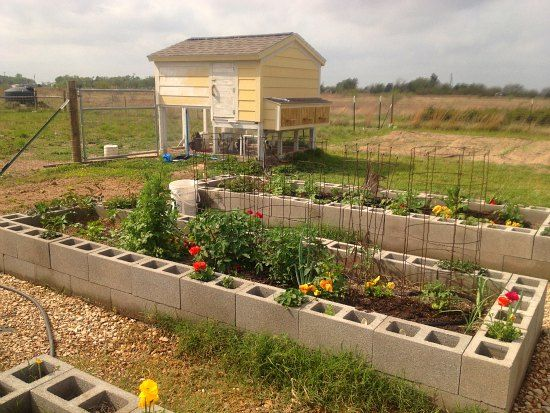 Mavis Mail Lindsey From Texas Sends In Cinder Block Garden - Chicken co op with flowers