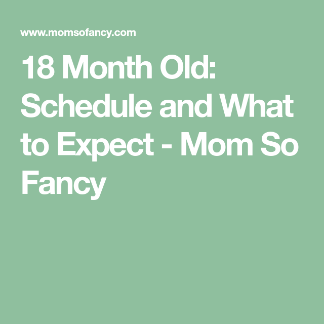 18 Month Old: Schedule and What to Expect | Baby month by ...