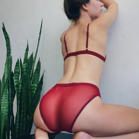 bb2941c81aa See Through Panties Sexy Underwear Women Erotic Panties Mesh Lingerie  Undies High Waisted Panties Si