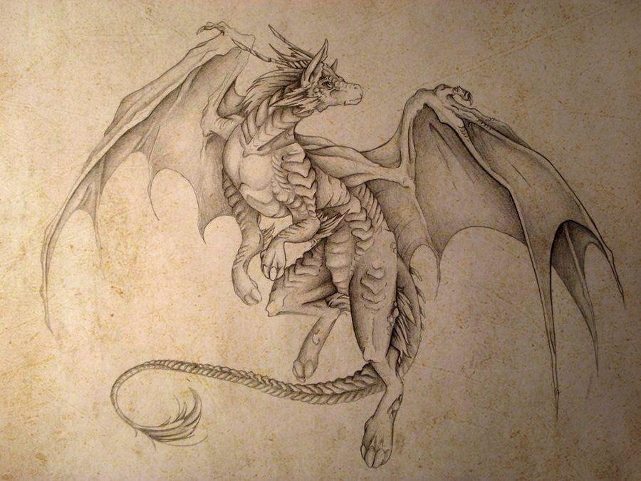 отличное картинки драконов графика смотреть это