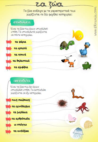 4fbc92d393f Τα ζωά: σπονδυλωτά και ασπόνδυλα | Αφίσες Φυσικής | Teaching methods ...