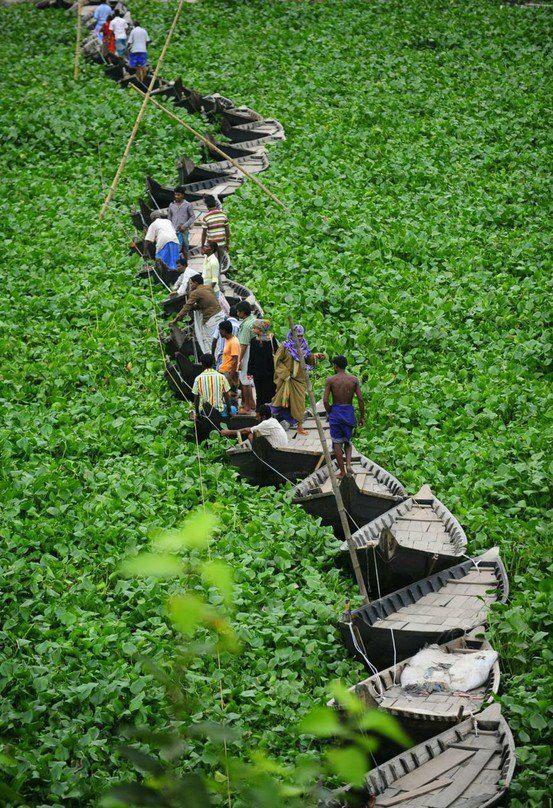 A+floating+boat+bridge+on+the+Buriganga+river+in+Dhaka,+Bangladesh+!!.jpg…