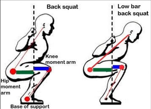 Image result for high bar vs low bar squat reddit   Gym
