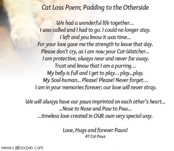 Cat Loss Poem Kt1 Jpg 600 520 Cat Loss Cat Loss Poems Cat Poems