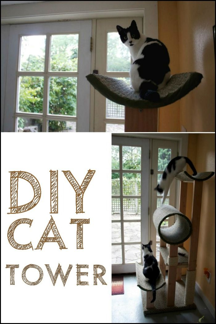 Diy Cat Tower Diy Cat Tower Cat Tower Cat Diy