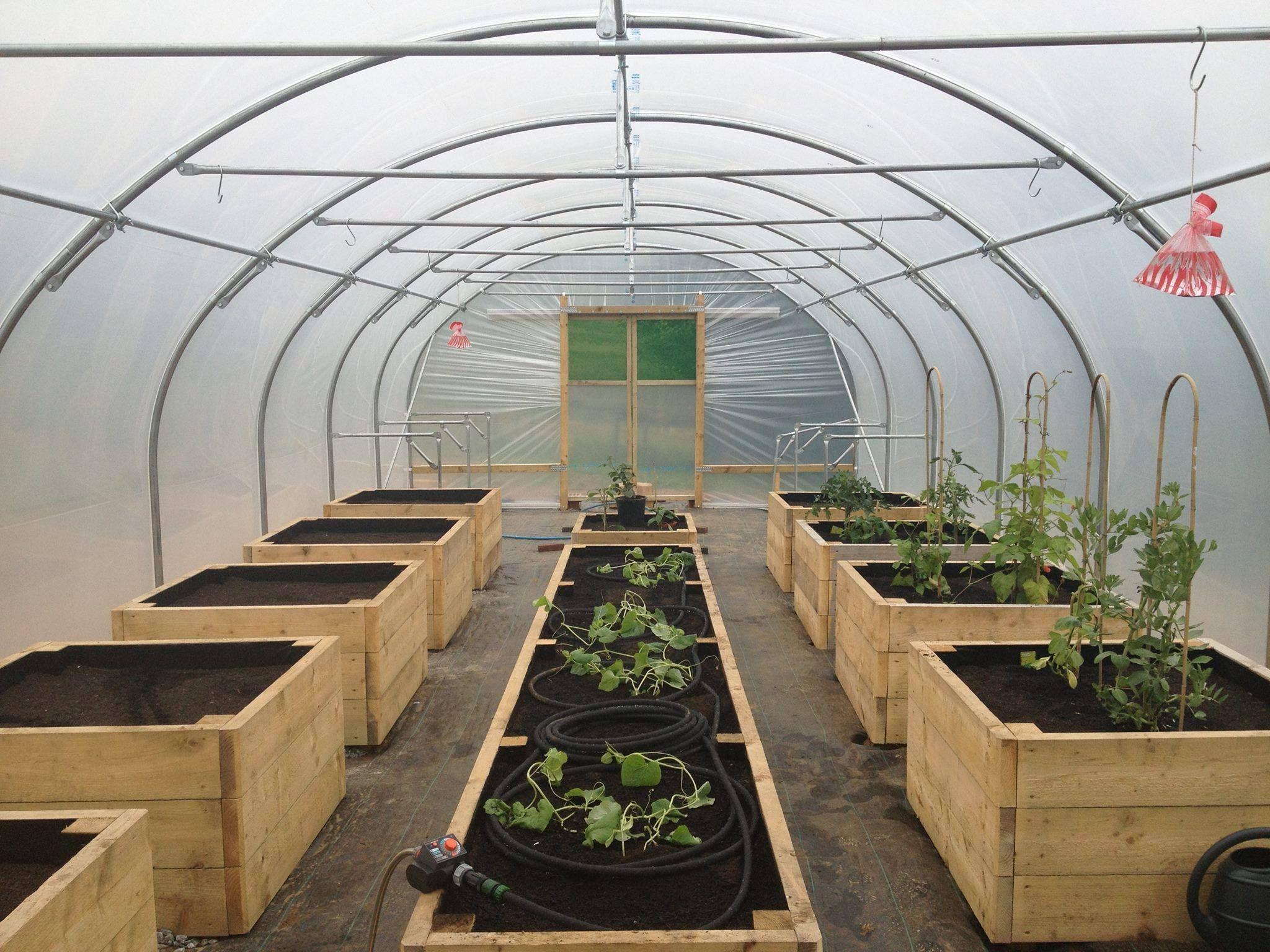 raised beds in tunnel Garden ideas Vegetable garden