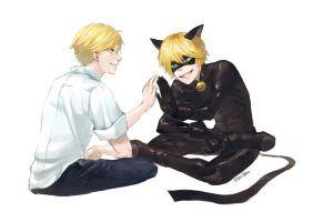 adrien and cat noir by jje9595