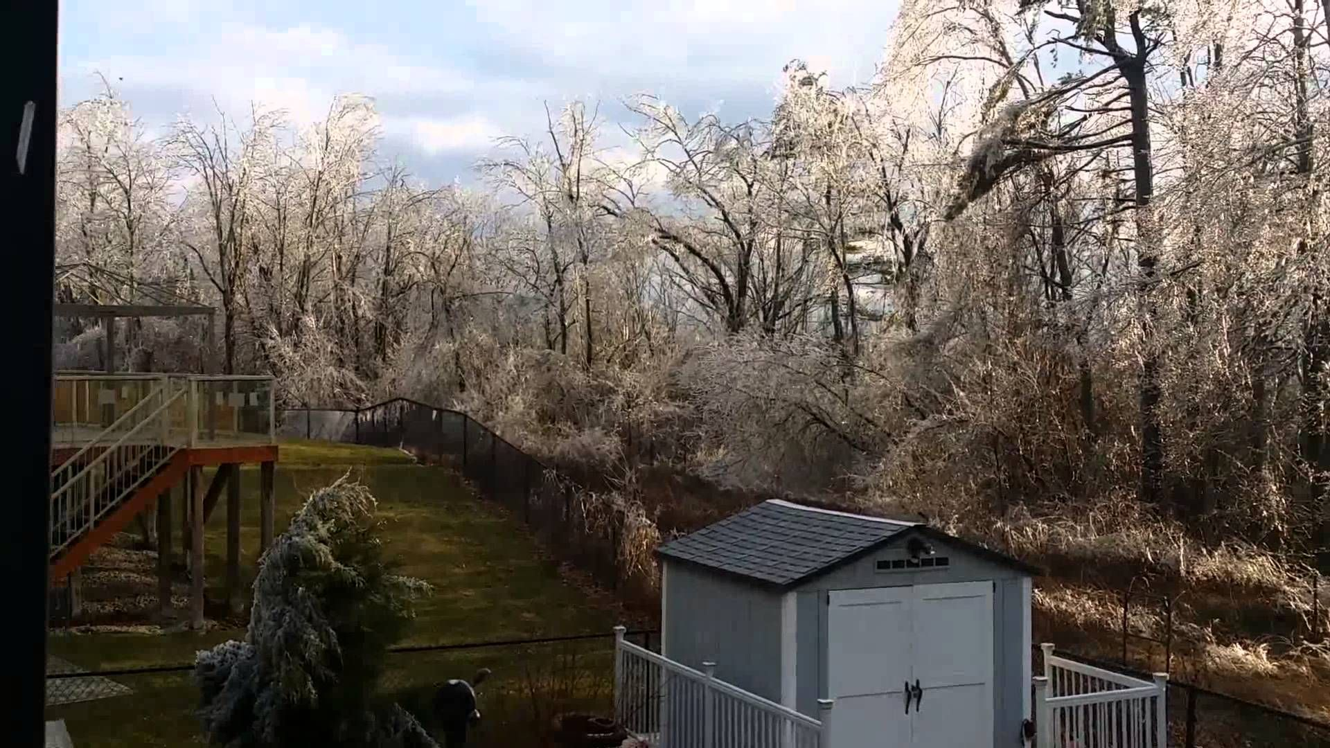 Ice Storm Aftermath Paris Ontario