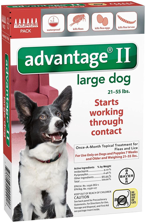 Pin On Dog Flea And Tick Control