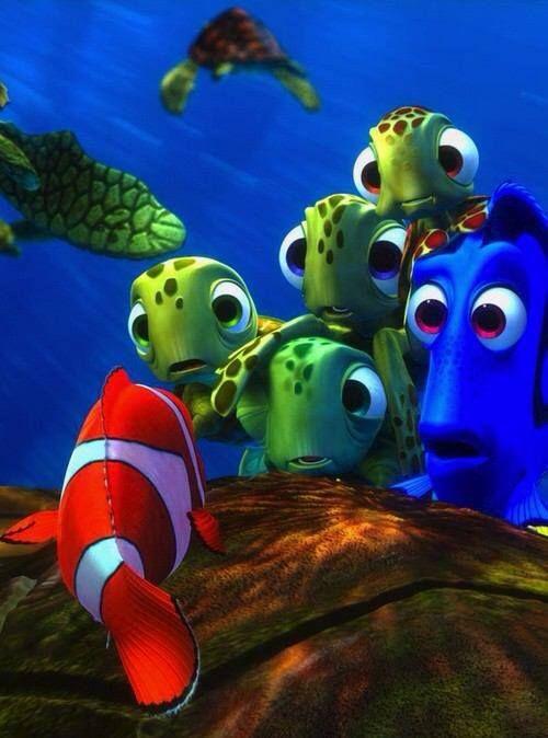 nemoww | Disney, Finding nemo, Disney fun  Walt Disney Pictures Presents A Pixar Animation Studios Film Finding Nemo