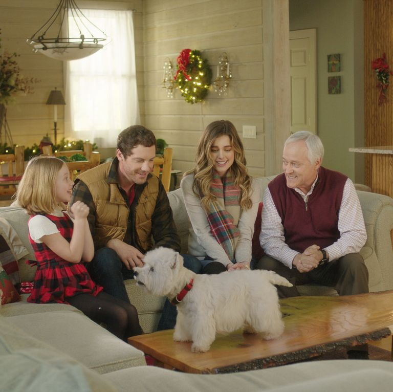 It's Here! The First Lifetime Christmas Movie of the Year