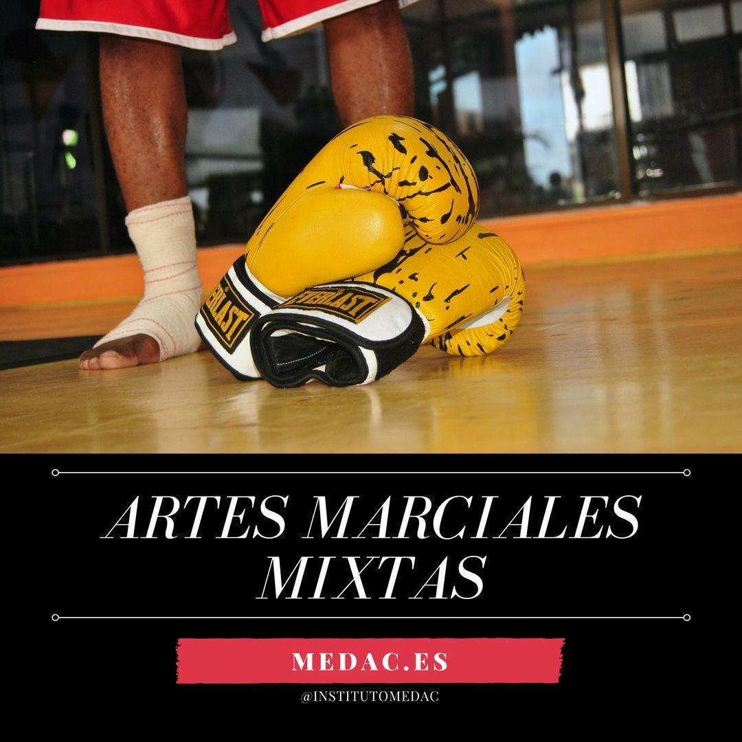 Artes Marciales Mixtas O Amm