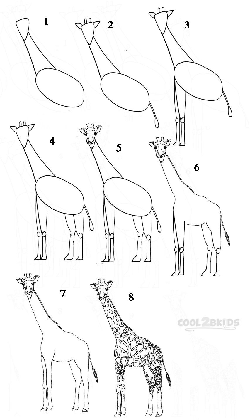 In this drawing lesson we'll show you how to draw a ...