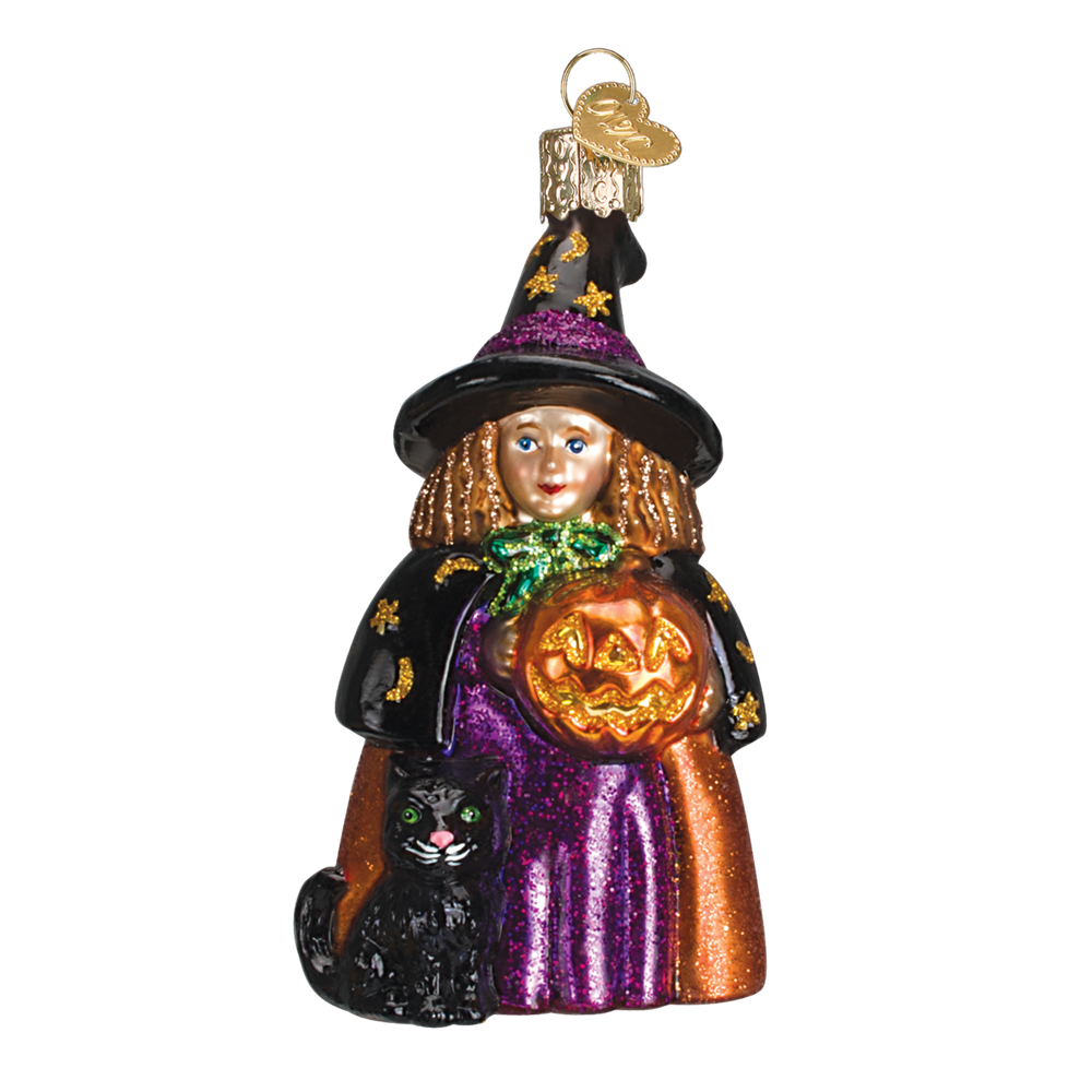Cute Witch Ornament   Old world christmas, Old world ...