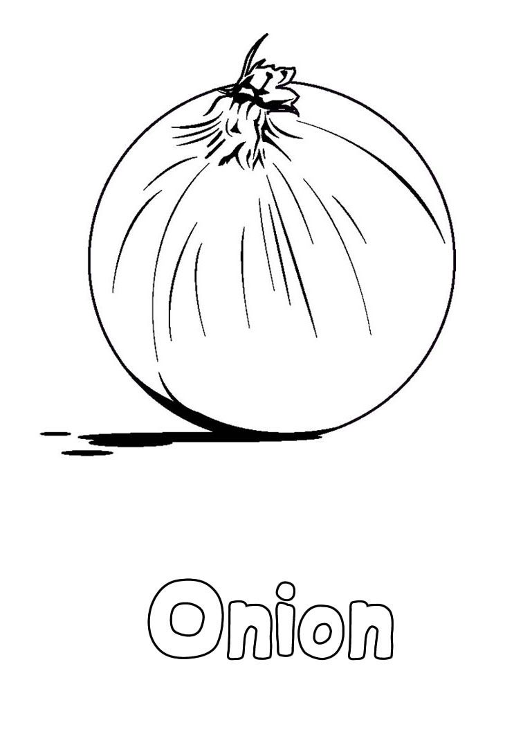 Onion Vegetable Coloring Pages | THEME-FOOD GROUP | Pinterest | Bilder