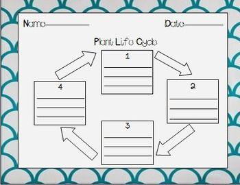 f993de46181cbd933a65c7757edca50d animal life cycles diagrams blank wiring diagram data