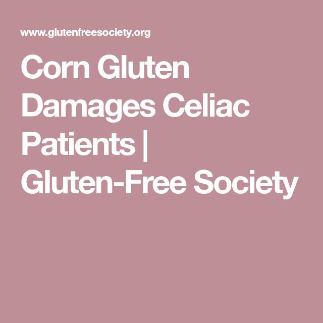Corn Gluten Damages Celiac Patients (With images) | Corn ...