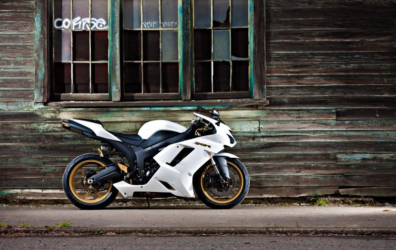 kawasaki zx6r custom paint - Поиск в Google