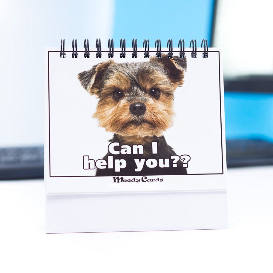 15 Funny Gift Ideas For Your Boss Under $20 | Funny office ...