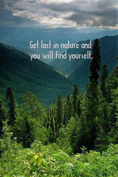 Get lost in nature and you will find yourself.