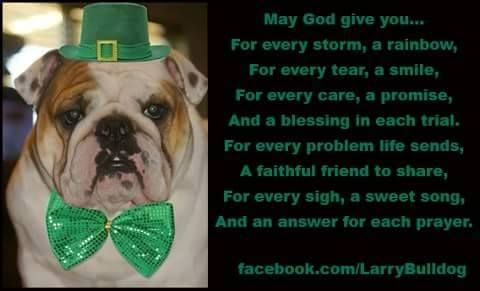 "❤ An ""Irish"" Bulldog Blessing (comes with a big slobering kiss too!) ❤ Posted on Larry The Bulldog on Facebook"