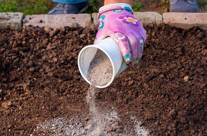 Древесная зола – натуральное удобрение и средство борьбы с вредителями |  Огород, Садоводство, Компост