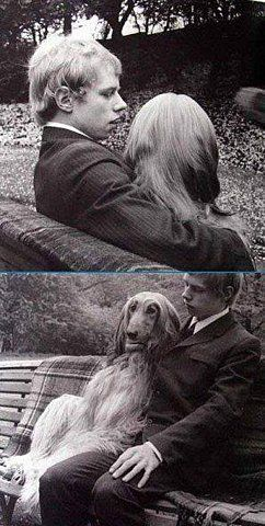 USA,  June 25th, 1967... After taking his dog for a walk Paul and an his Afghan hound sit on a park bench to rest. Photo: NY Daily News Archive via Getty Images. °