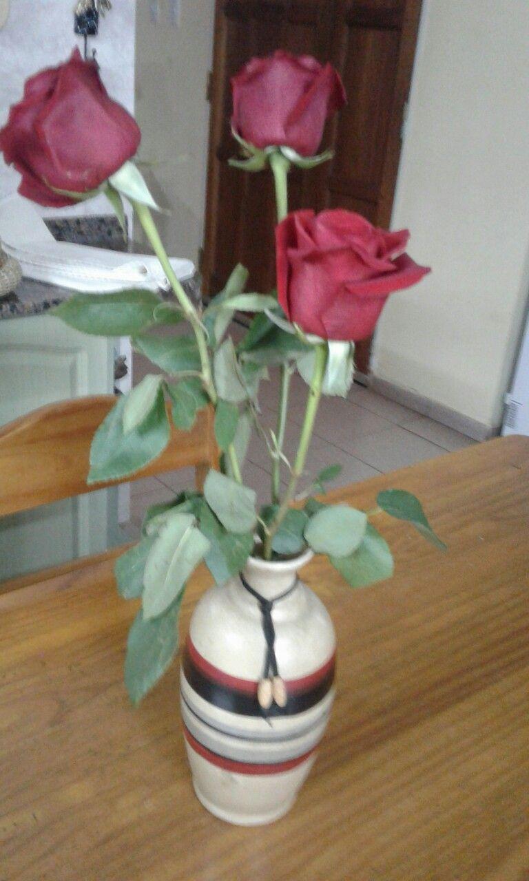 Rosas en mi hogar