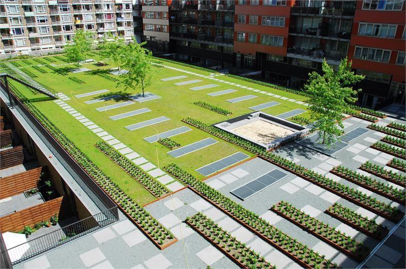 Paisagismo Da Praça Deichmann Por Chyutin Arquitetos | PAISAGISMO |  Pinterest | Landscaping