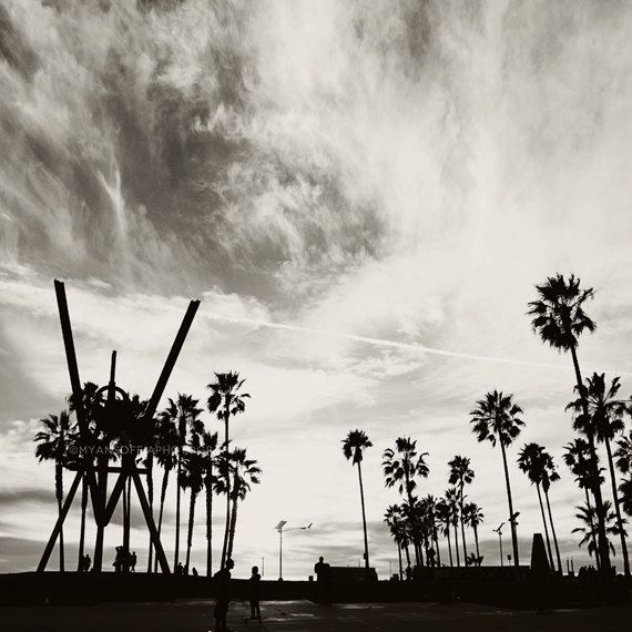Photography venice beach photo black and white photograph palm trees la los angeles california beach boys room decor gray for him