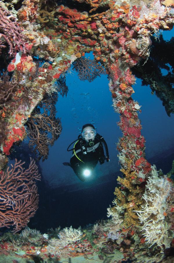 USA Dive Sites #scubadivingvacation