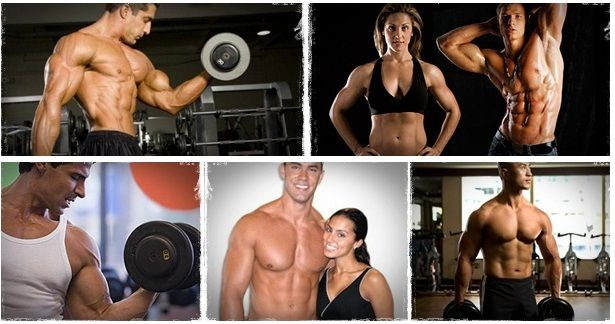 vince delmonte no nonsense muscle building review scam or not?