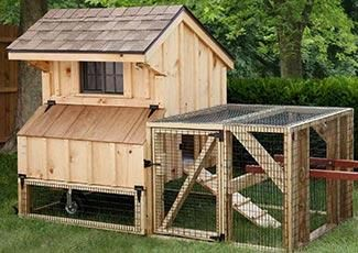 Backyard Chicken Coops Designs