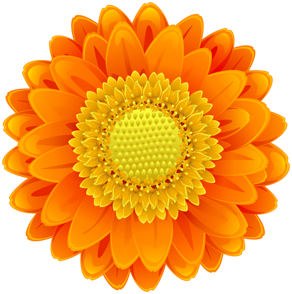Orange Flower Clip Art Png Image Flower Clipart Free Clip Art Flower Clip