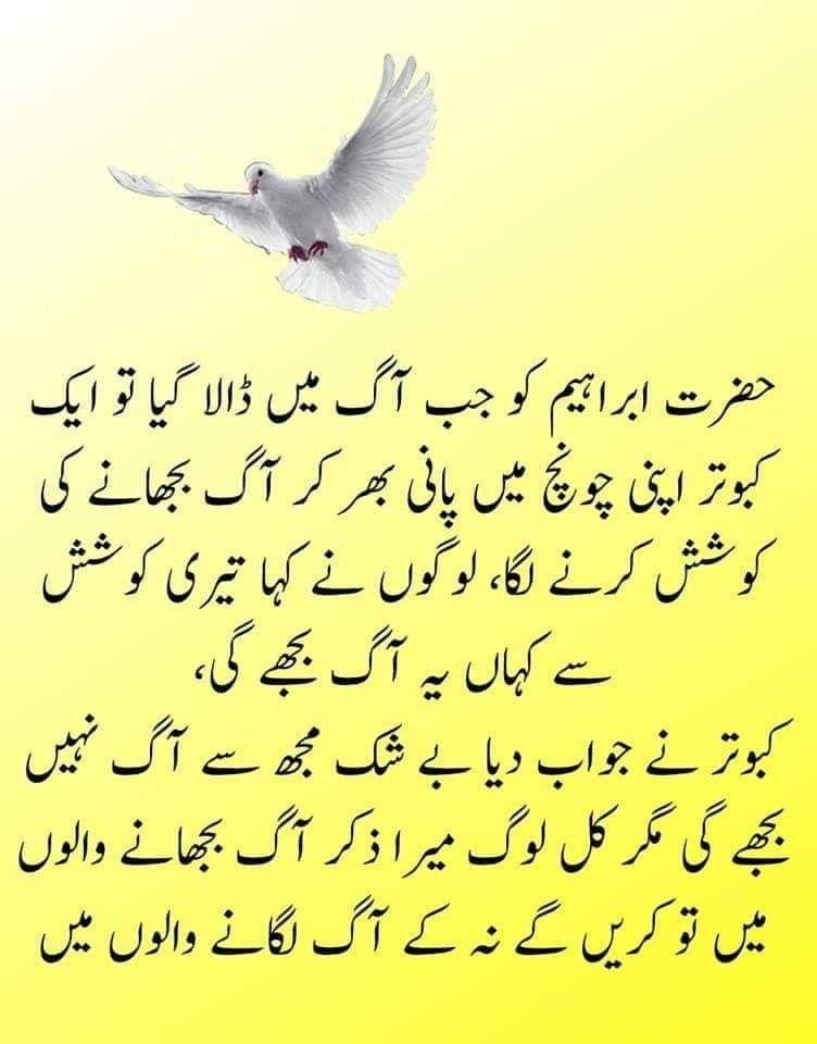 12+ Good health quotes in urdu images