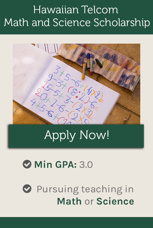 The Purpose Of This Fund Is To Attract And Support Talented Students Who Plan To Pursue A Teaching Career In Mathematics Teaching Career Scholarships Education