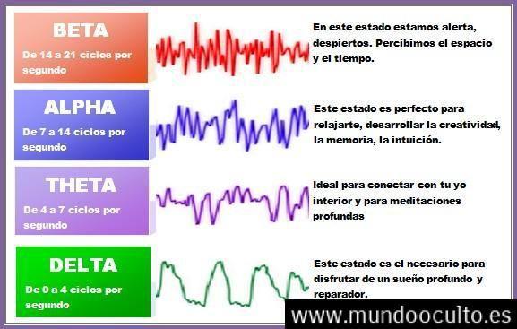 Conoce tus Ondas Cerebrales: Alpha Beta Theta Delta y Gamma | Curiosidades  del cuerpo humano, Mente humana, Tipos de ondas fisica