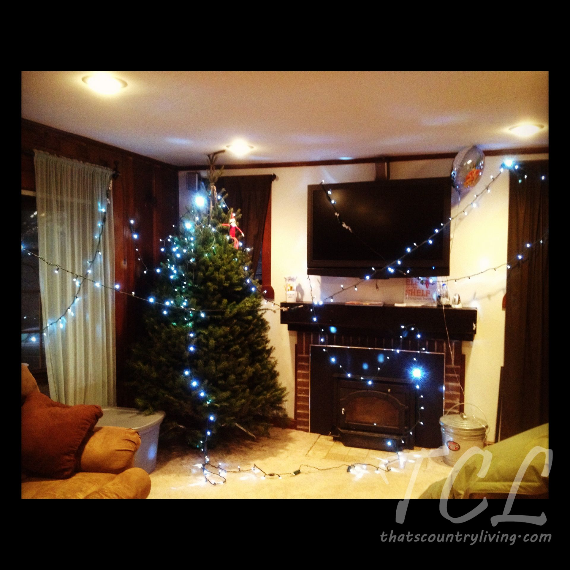 Elf hung Christmas lights in living room