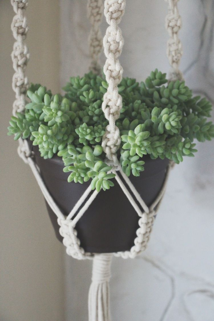 Our first giveaway macrame plant hangers plant hangers and plants - Comment faire une suspension en macrame ...