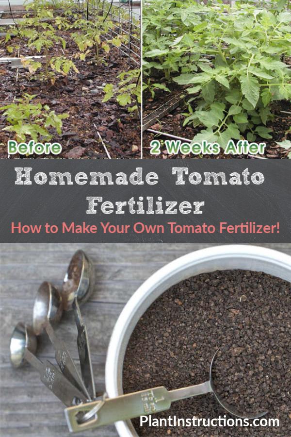 How To Make Tomato Fertilizer Tomato Fertilizer Fertilizer For
