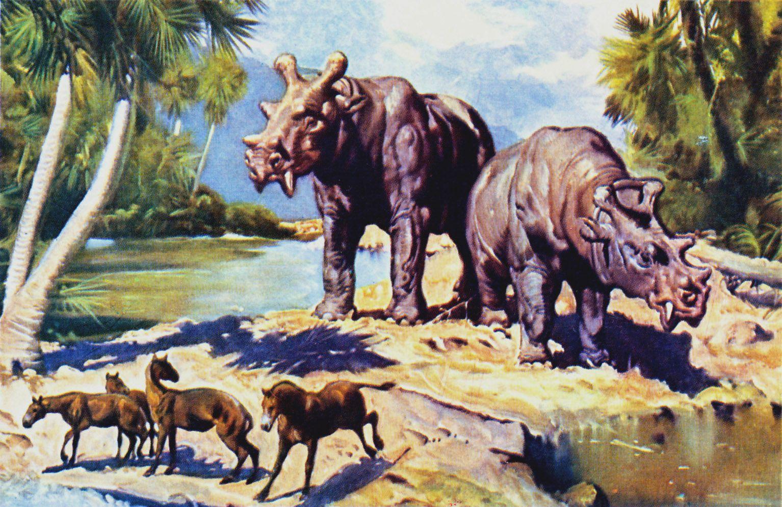 giant animals north america - HD1534×994