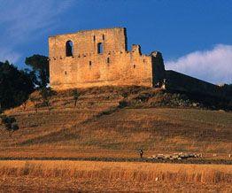 castle ruins overlooking Botromagno vineyards