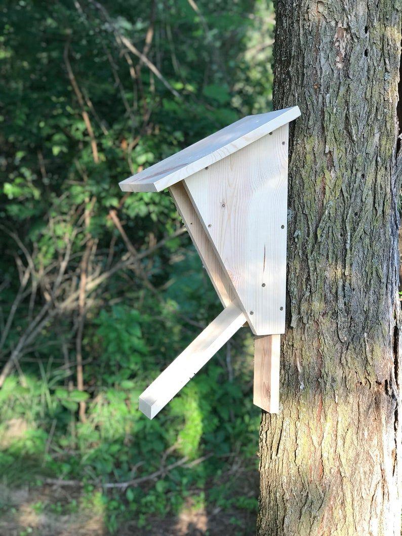 Peterson bluebird outdoor birdhouse, bluebird habitat
